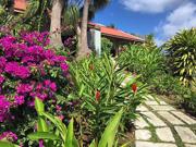 Martinique Itinerary