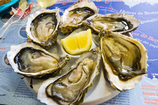 Oyster tasting in Larmor-Baden