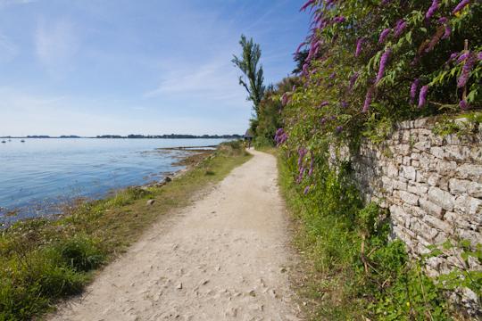 Ile-aux-Moines, Morbihan