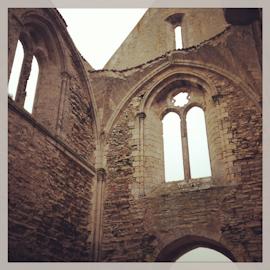 Marais Poitevin, La Rochelle, Ile de Re-12