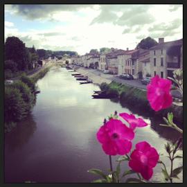 Marais Poitevin, La Rochelle, Ile de Re-2