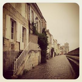 Marais Poitevin, La Rochelle, Ile de Re-7