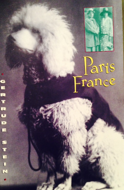 Book Review: Paris France by Gertrude Stein